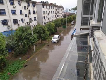 china2019_01212